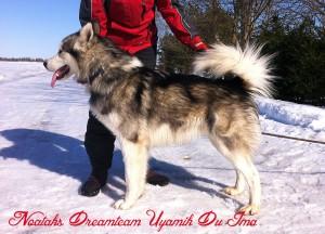 Noataks-Dreamteam-Uyamik-Du-Ima-2013-04-03