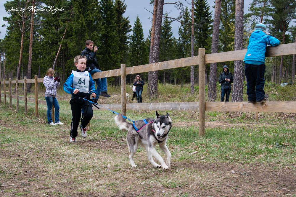 Balto-Kevadkarikas-2014-foto-48