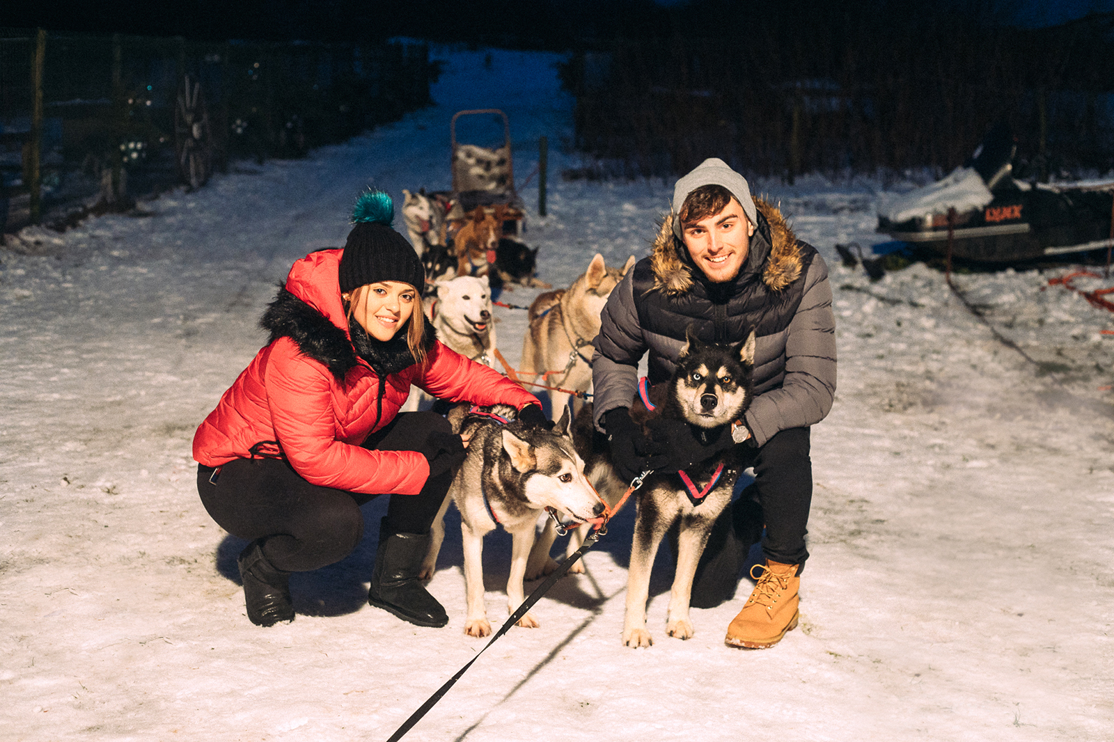 Huskypark dog sledding in Estonia