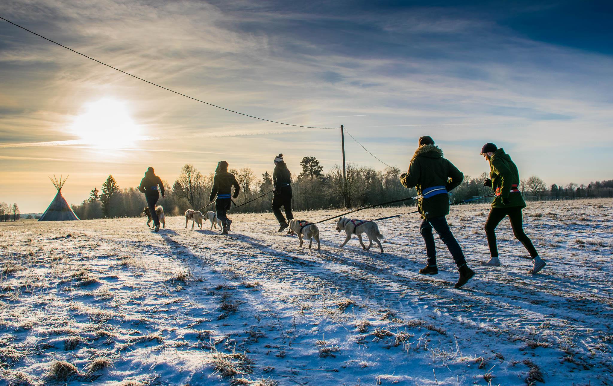 Hellerkantri Huskypark kelgukoerte jalgsimatkad Raplamaal